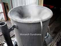Monarch Syndrome