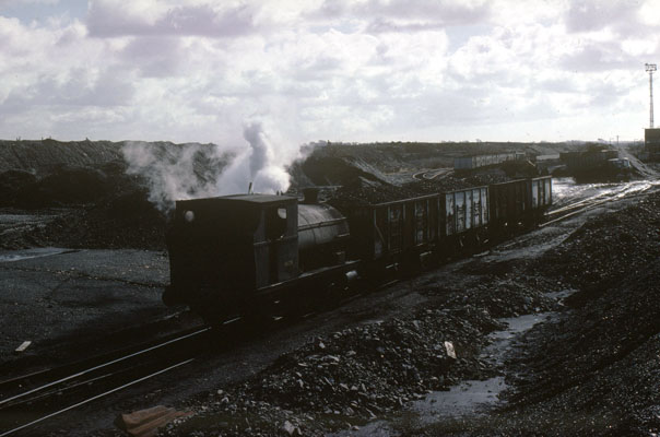 No.1426 shunting loaded wagons at Brynlliw Colliery. January 31 1978. © Roger Griffiths
