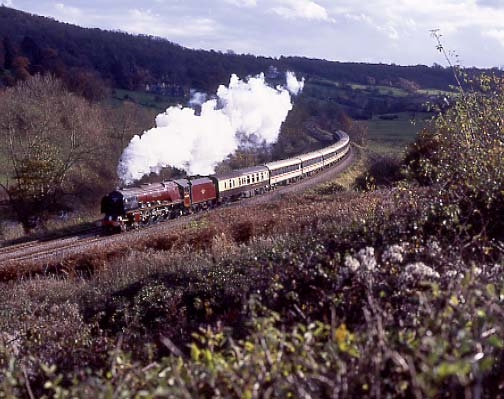 46229 Duchess of Hamilton runs past Claverton on her way to Bristol Temple Meads. November 6 1994