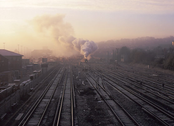 More shunting ! 46229 Duchess of Hamilton pulls forward out of Guildford station. November 16 1996