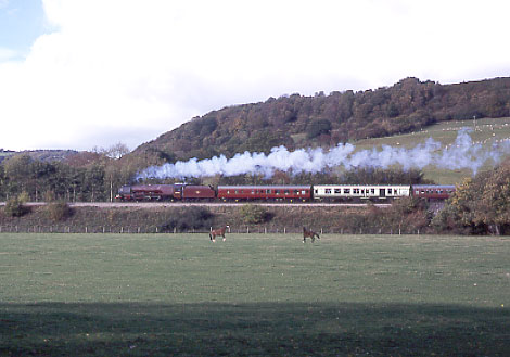 46229 Duchess of Hamilton climbs Llanvihangel bank. October 26 1996