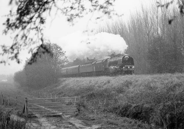 46229 Duchess of Hamilton in record setting mode climbs Whiteball at over 60mph. November 1996