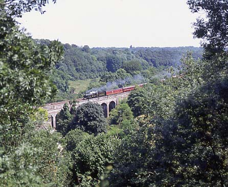 5029 Nunney Castle drifts across Frampton Mansell viaduct with the 'Cotswold Venturer' July 17 1994