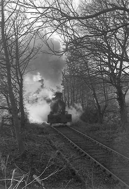 Wellington climbs away from East Tanfield with the 'North Pole Express' santa special. December 11 1993